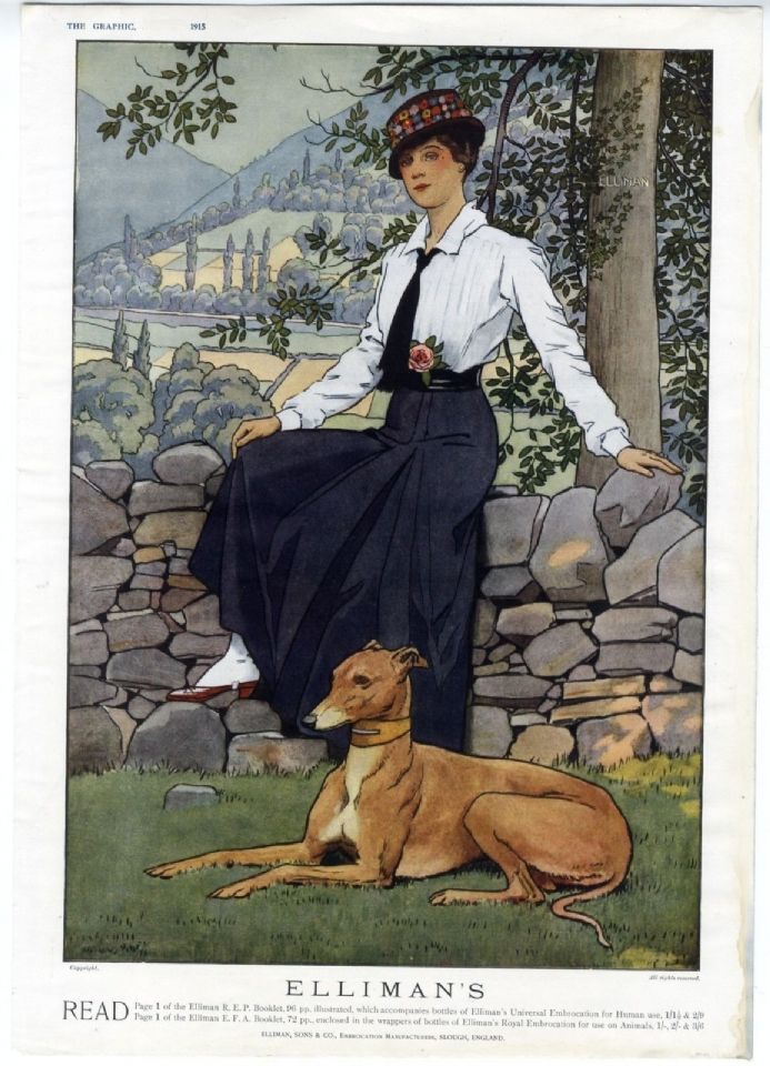 1915 Antique Print GREYHOUND Dog LADY Edwardian Style Fashion ELLIMANS Advert